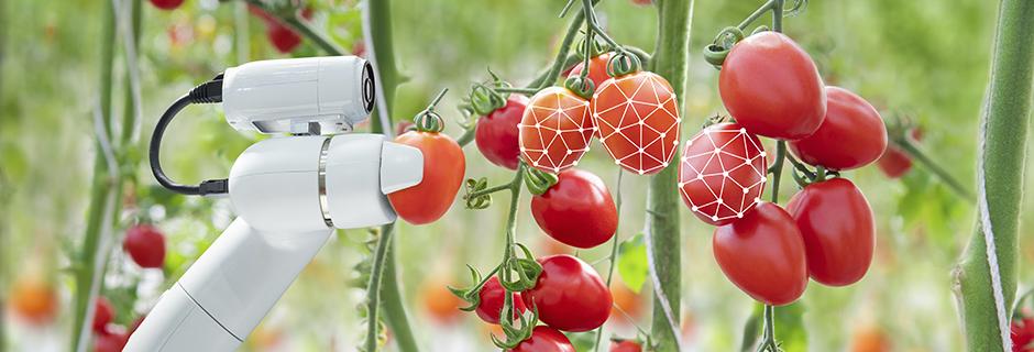 Future Food Innovation POP – final event
