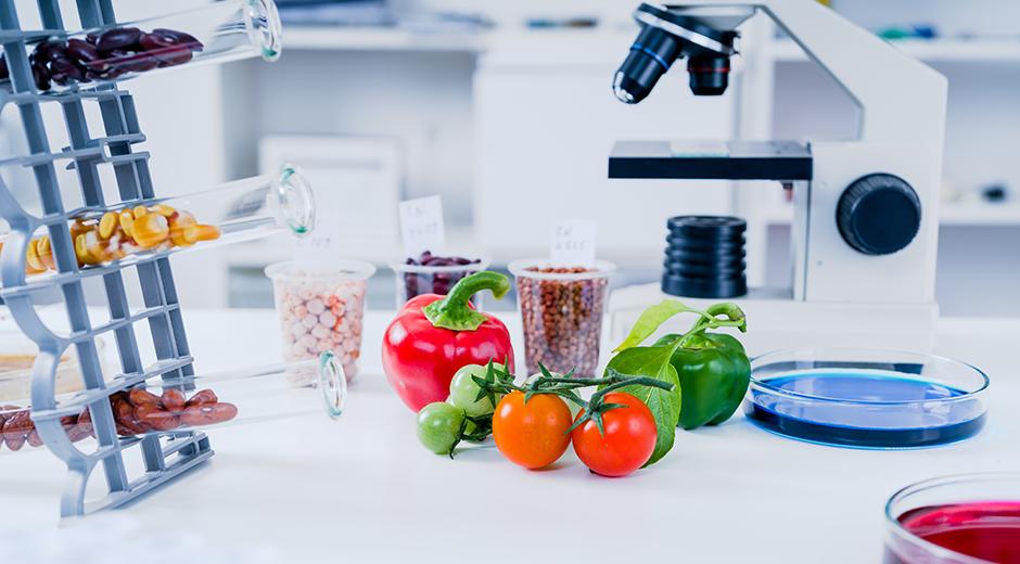 Fremtidens fødevarer –  afslutningsarrangement for Future Food Innovation DEV